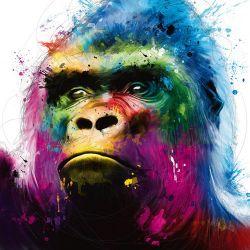 """Gorilla"" de Patrice Murciano"