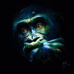 Black Kong de Murciano, Patrice