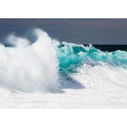 """Baja California"" de Westfield Wim"
